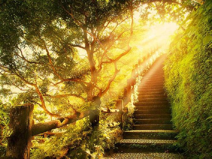 439736-800x600-Stairway-To-heaven